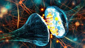 استفاده از فیزیک برای درک راز سطح هوشیاری و مشکلات عصبی