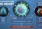 تحقیقات نشان می دهد COVID 19 یک بیماری متابولیک چند عضوی است