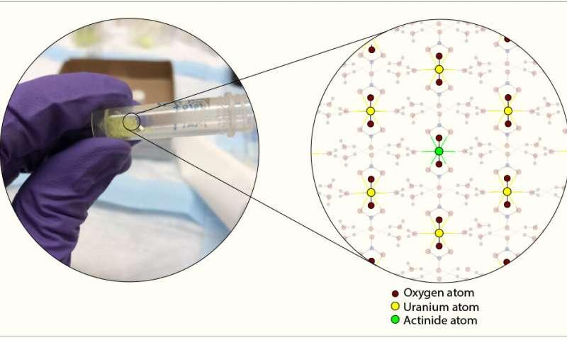 کشف ماهیت ساختار نانوسیمی اورانیوم در محیط