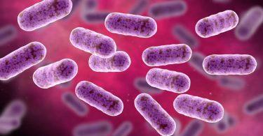 panspermia-آزمایش ایستگاه فضایی نشان داد باکتری ها می توانند در فضا زنده بمانند
