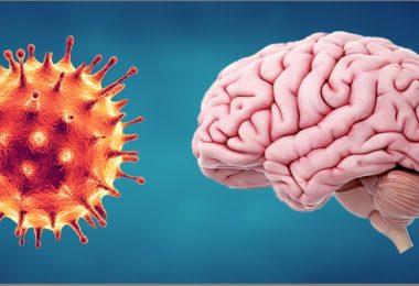ویروس کروناآیا COVID 19 می تواند خطر از دست دادن حافظه را افزایش دهد؟