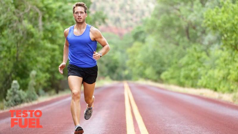 مطالعه هاروارد از آنزیمی که باعث افزایش چربی سوزی و استقامت ورزشی می شود پرده برداشت
