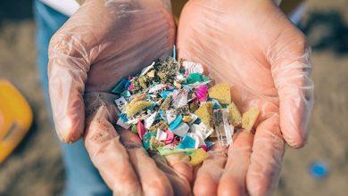 کشف ذرات بسیار کوچک پلاستیک در نمونه ریه، طحال، کبد و کلیه انسان