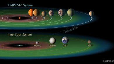 تعداد سیارات فراخورشیدی که می تواند منطقه قابل سکونت باشد