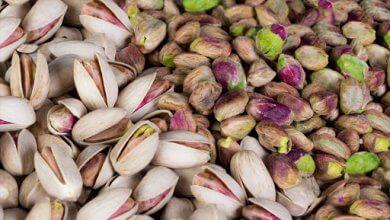 بهترین تأمین کنندگان آجیل رژیم غذایی پسته در ایران را پیدا کنید