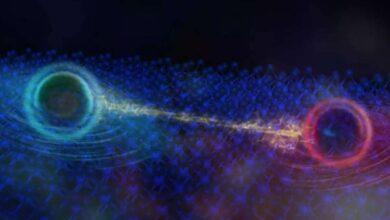 کشف یک ذره کوانتومی جدید در هنگام آزمایش بر روی مقره (نوسانات کوانتومی در فرمیون خنثی