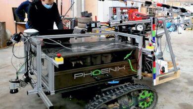 طراحی ربات ققنوس برای هرس کردن درختان میوه