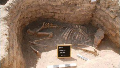 باستان شناسان یک شهر باستانی را در مصر کشف کردند