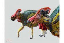"""شناسایی فسیل دایناسورهای """"پرحرف"""" از روی فسیل های کشف شده در مکزیک"""
